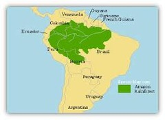 South America Physical Features | Essay Writing Service A+