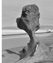 What is a Rock pedestal ? How are they formed ?